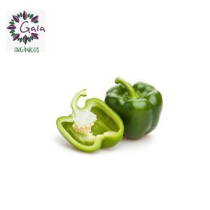 Pimentão Verde Orgânico - Bandeja 350g
