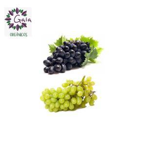 Uva sem caroço Orgânica - Pacote 350g