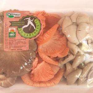 Bandeja mista de cogumelos variados (3 tipos) Orgânico 200g - DoCaminhante