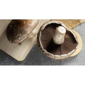 Cogumelo Porto Belo ( 200g) Orgânico