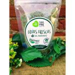 Sal de ervas orgânico - Ervas Frescas - 150g