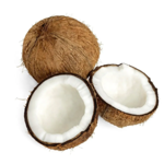 Coco seco orgânico (und)