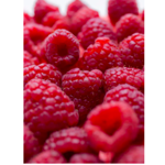Framboesa Congelada Agroecológica (500g)