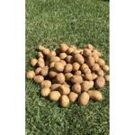 Batata inglesa orgânica (500g)