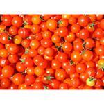Tomatinho grape