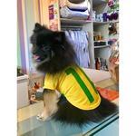T-Shirt BRASIL masculina