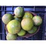 Limão rosa (kg)